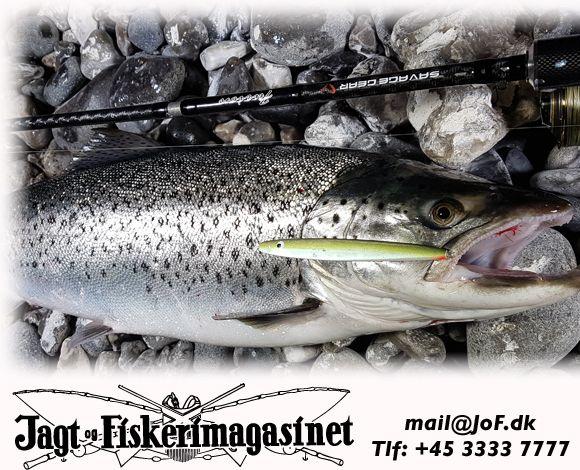 sport og fritid jagt og fiskeri jagt